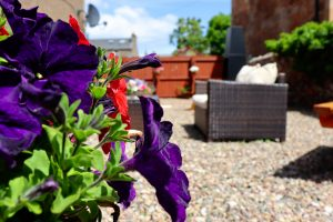 photo of Guests garden at Gowanlea Heights B&B